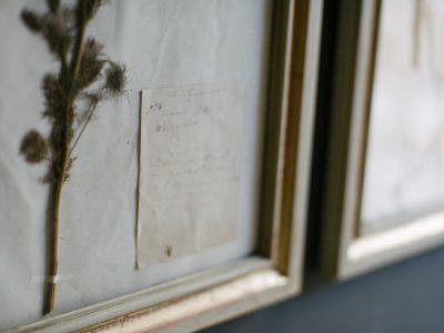 H10-Botanicals-Elusio-Antique-Design-product-5.jpg