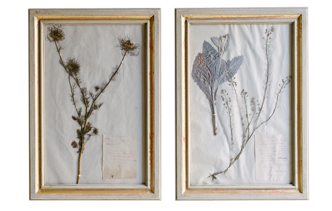 H10-Botanicals-Elusio-Antique-Design-product-6.jpg