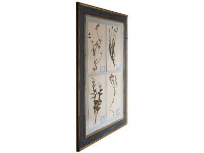 H11-Botanicals-Elusio-Antique-Design-products-1.jpg