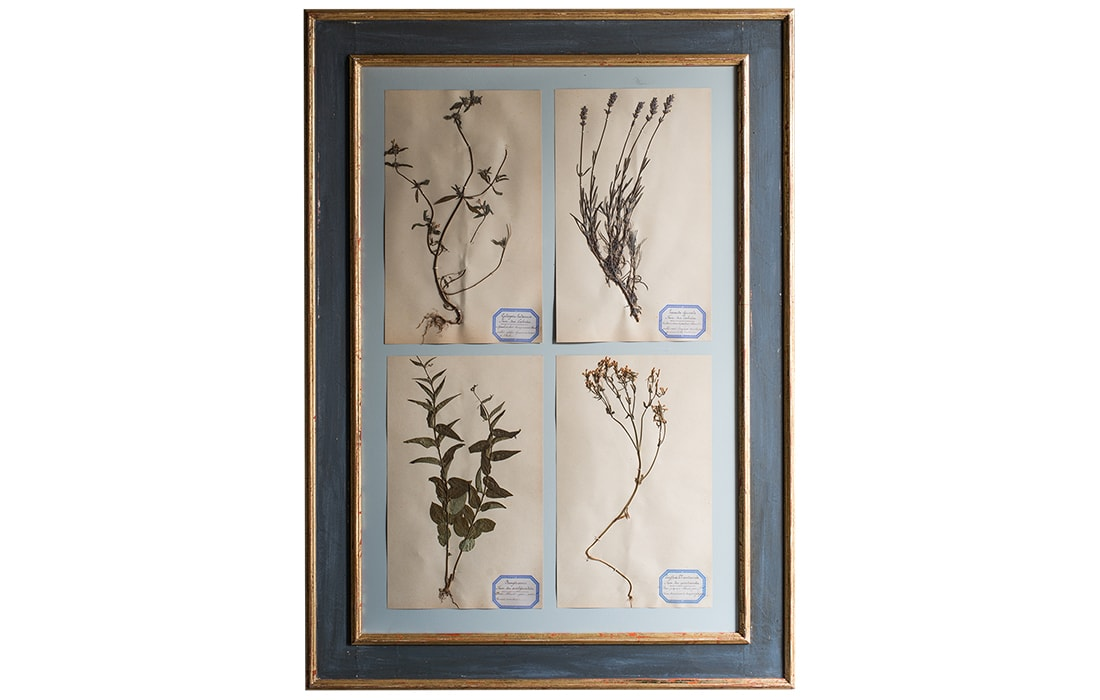H11-Botanicals-Elusio-Antique-Design-products.jpg