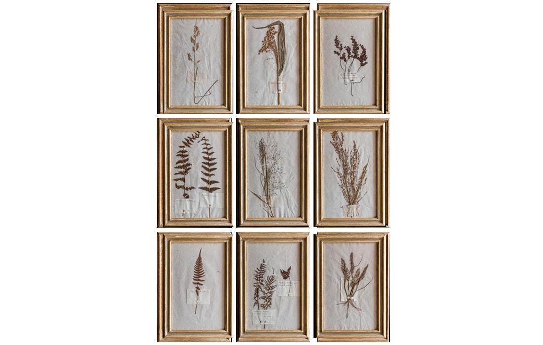 H13-Botanicals-Elusio-Antique-Design-product.jpg