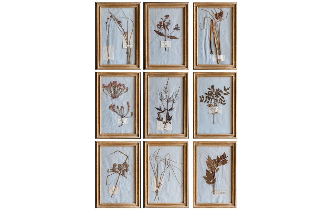 H14-Botanicals-Elusio-Antique-Design-product.jpg