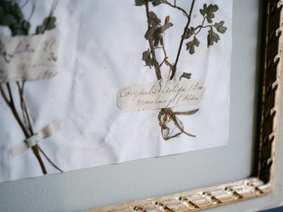 H18-Botanicals-Elusio-Antique-Design-products-2.jpg