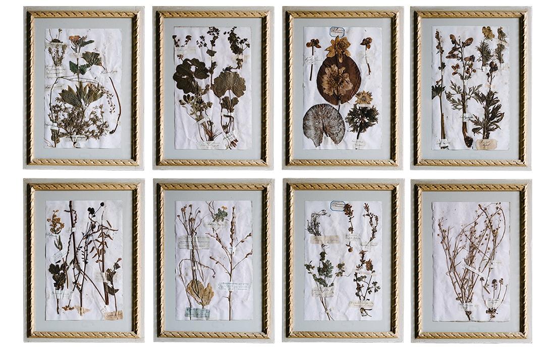 H18-Botanicals-Elusio-Antique-Design-products-4.jpg