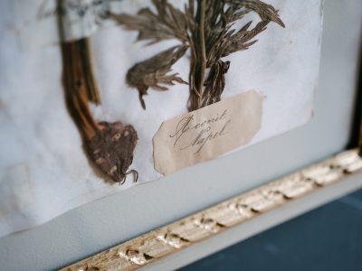 H18-Botanicals-Elusio-Antique-Design-products.jpg