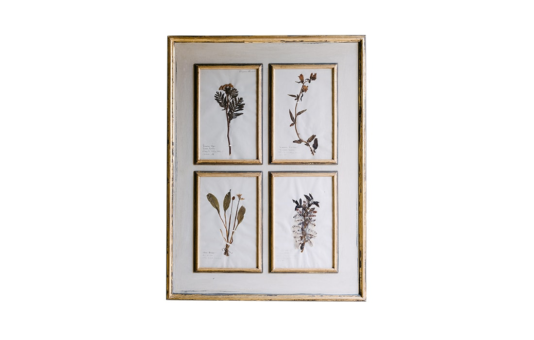 H19-Botanicals-Elusio-Antique-Design-product-1.jpg