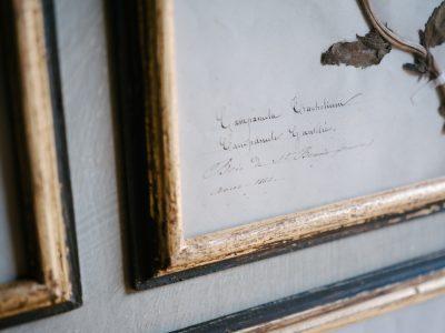 H19-Botanicals-Elusio-Antique-Design-product-2.jpg