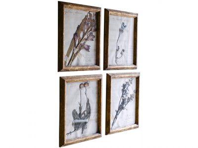 H9-Botanicals-Elusio-Antique-Design-product.jpg