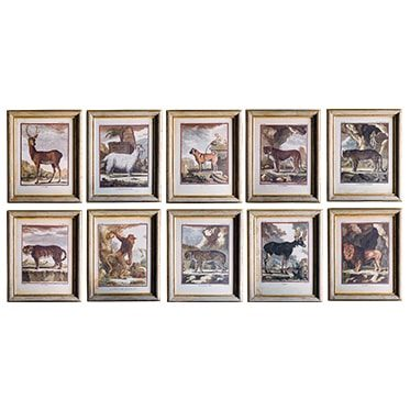 REF : G4BIS LARGE ANIMALS FROM BUFFON BEIGE AND GOLD FRAME