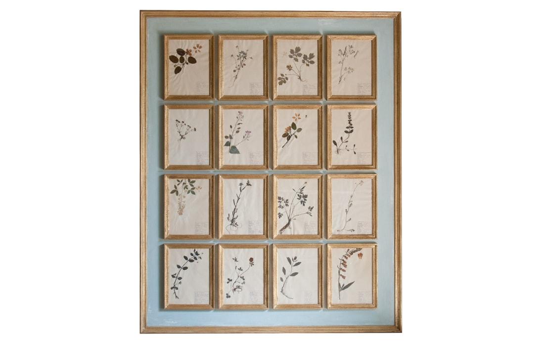H21-Botanicals-Elusio-Antique-Design-product.jpg