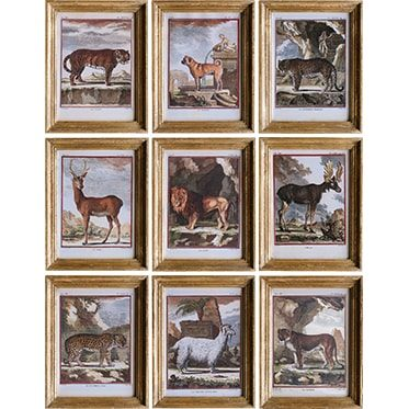 REF : G15, 9 SMALL ANIMALS BUFFON GILDED FRAME