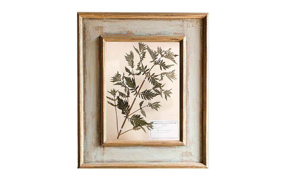 H15-Botanicals-Elusio-Antique-Design-product.jpg